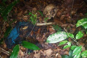 Polícia registra achado de cadáver em Cururupu